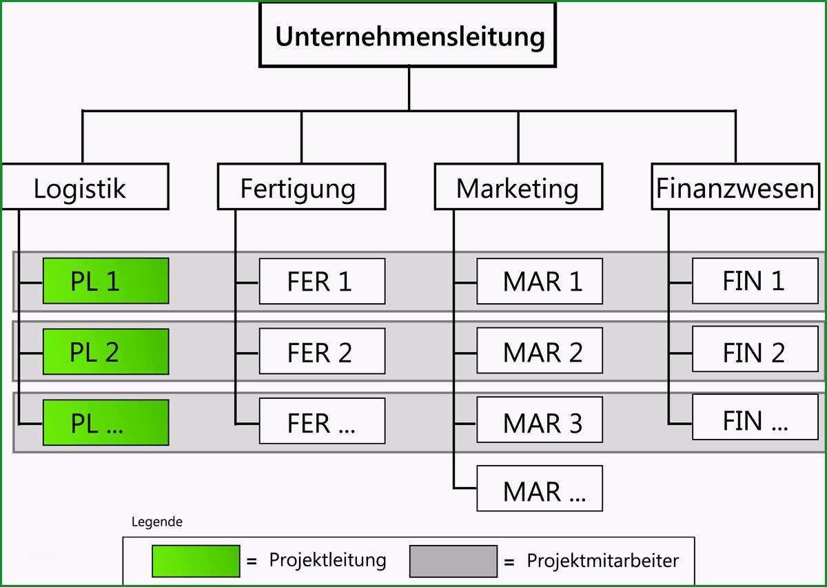 matrix projektorganisation