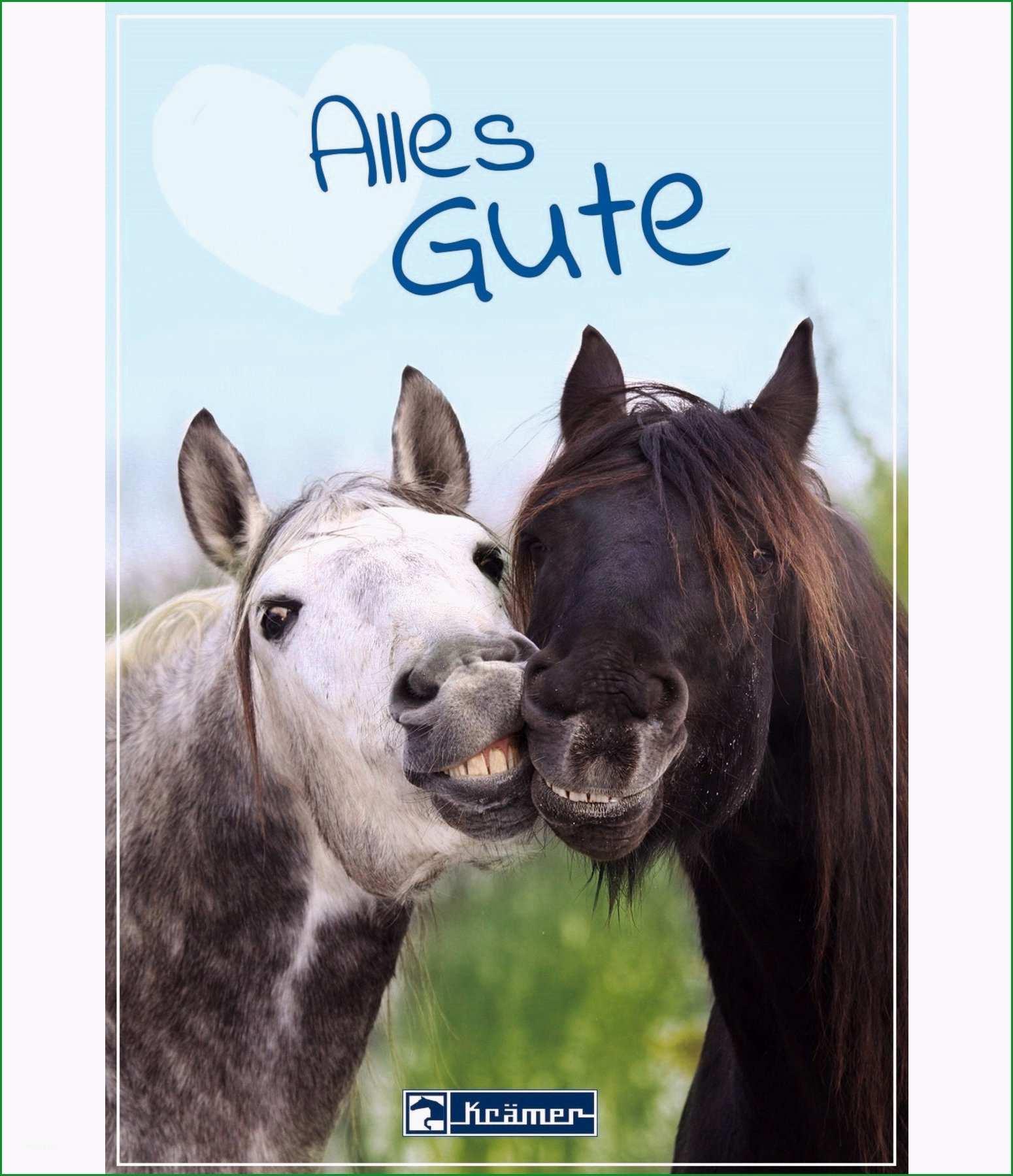Geschenkgutschein zum Ausdrucken websale8=kraemer pferdesport&pi=GUTZA27&ci=