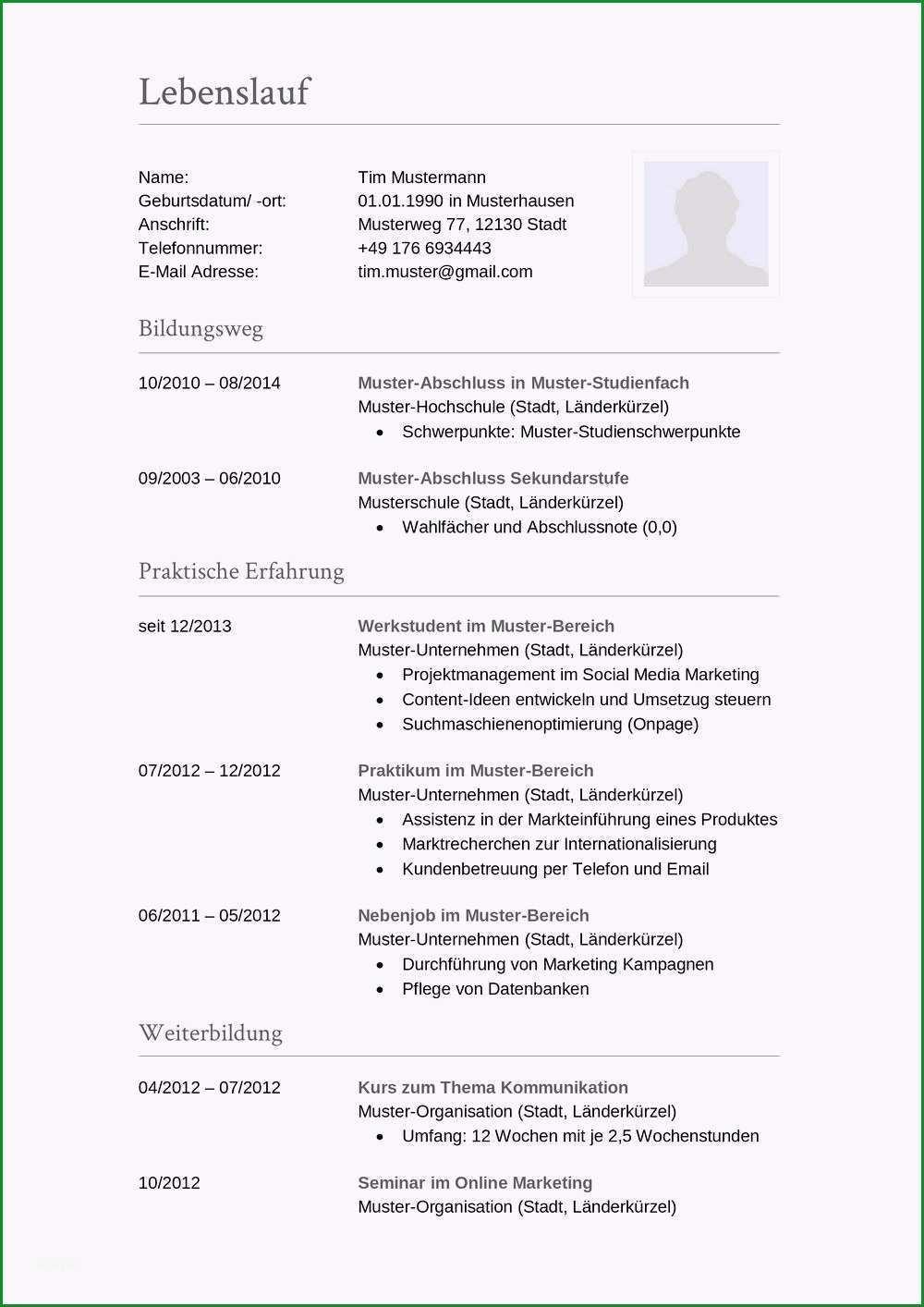 14 tabellarischer lebenslauf akademiker muster