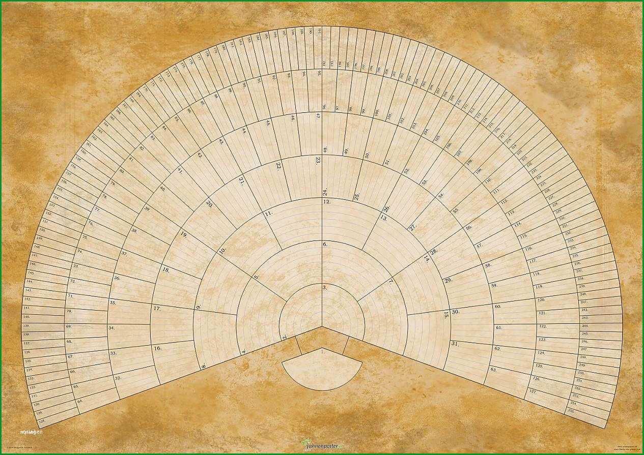 stammbaum vorlage 5 generationen erstaunlich ahnenposter online alnus pergament