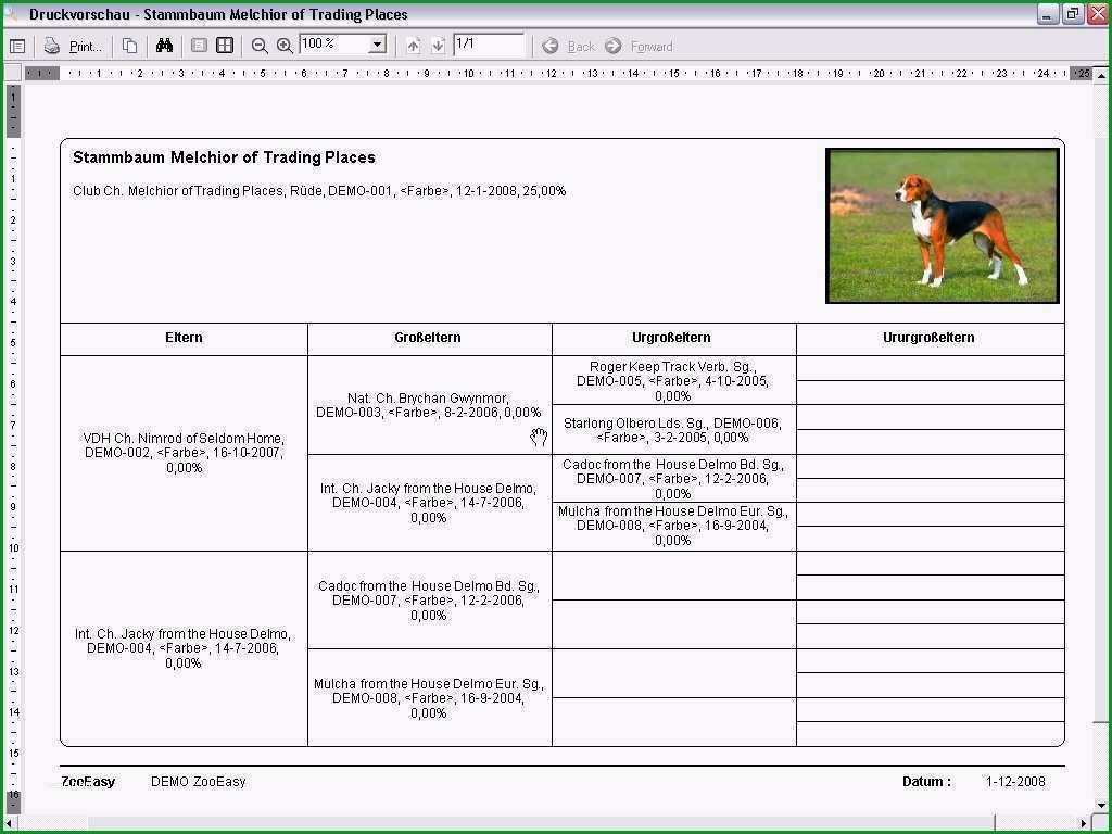 stammbaum erstellen vorlage beste zooeasy hundezucht software hunde stammbaum hunde
