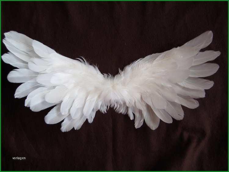 vorlage engels fluegel