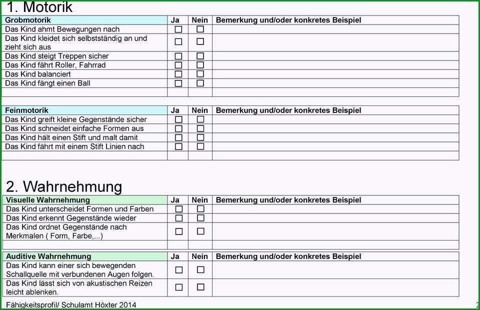 beobachtungsbogen krippe vorlage wunderschonen entwicklungsbericht der kindertagesstatte zum antrag auf eroffnung