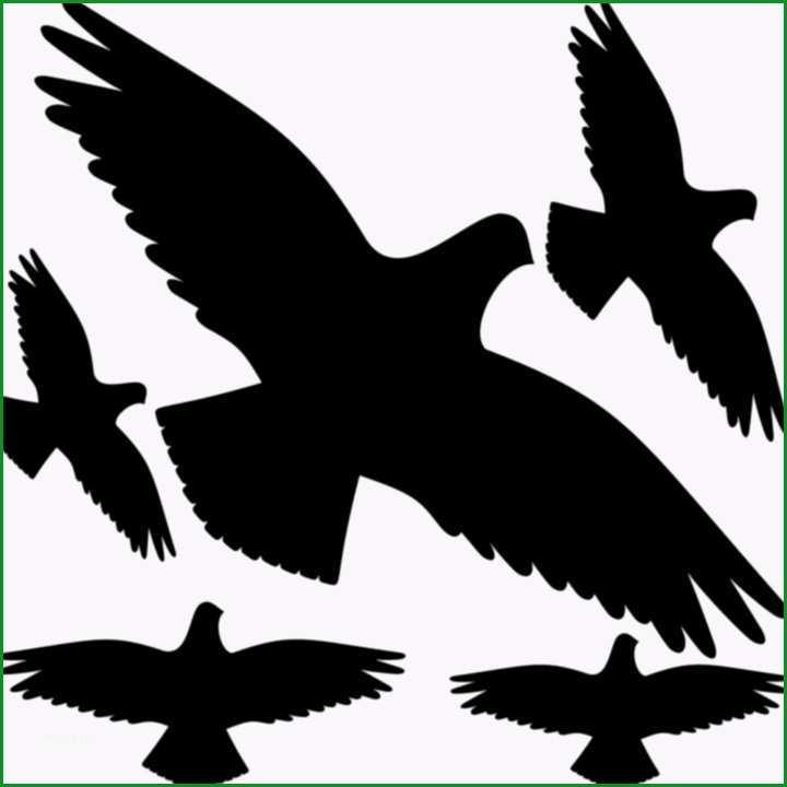vorlage vogel fenster