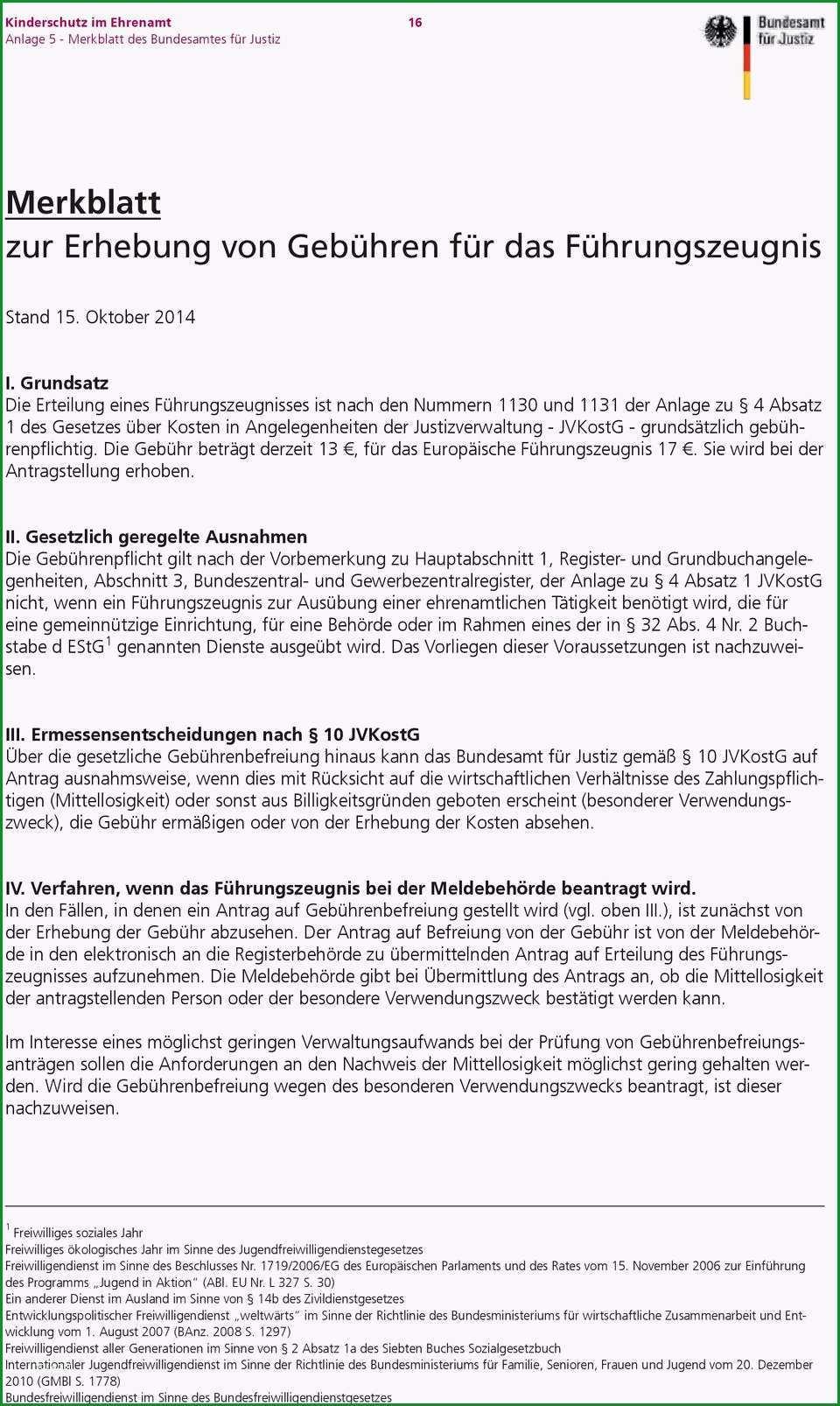 Kinderschutz im ehrenamt leitfaden fuer vereine und verbaende zur vorlage erweiterter fuehrungszeugnisse heidelberg de