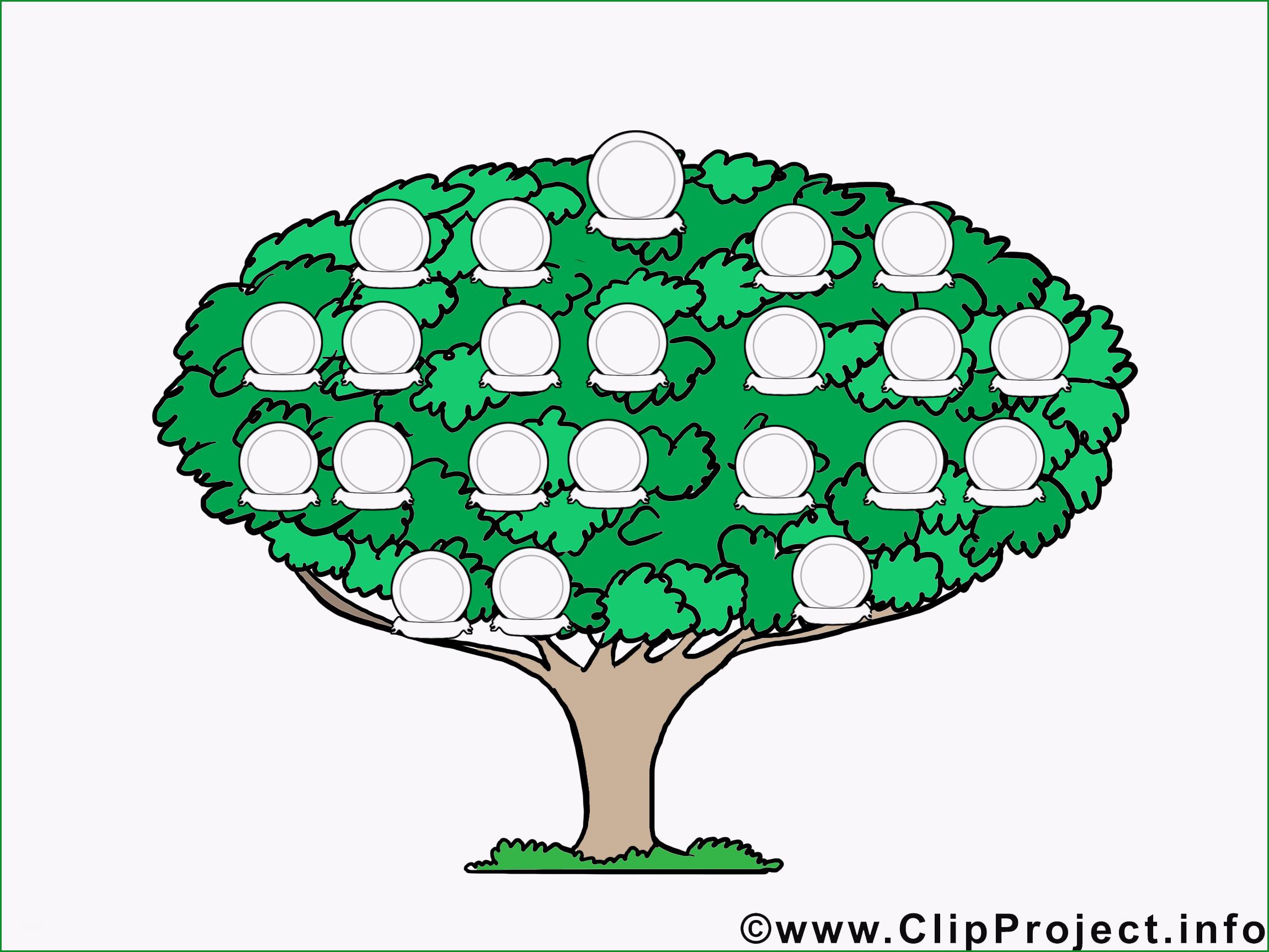 Hervorragen Familienbaum Bild Vorlage