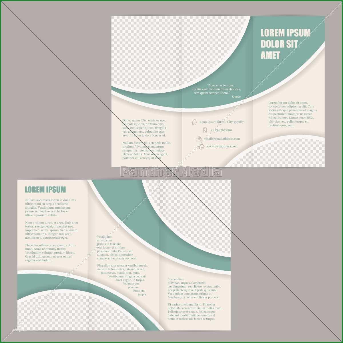 tri fold broschuere flyer design vorlage