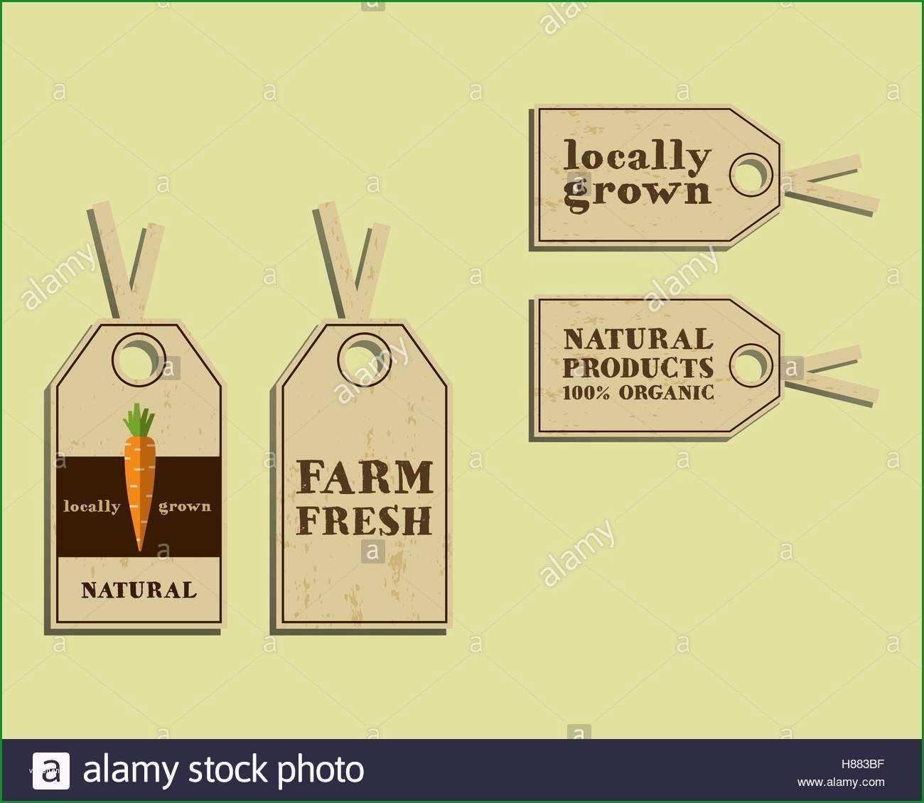 organic food brochure design page=3