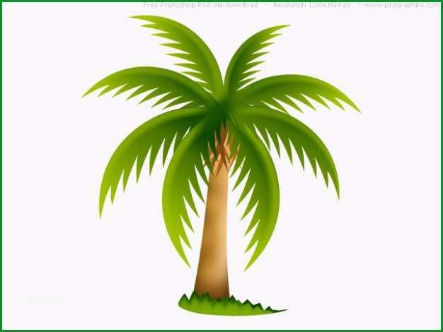 palme psd web icon