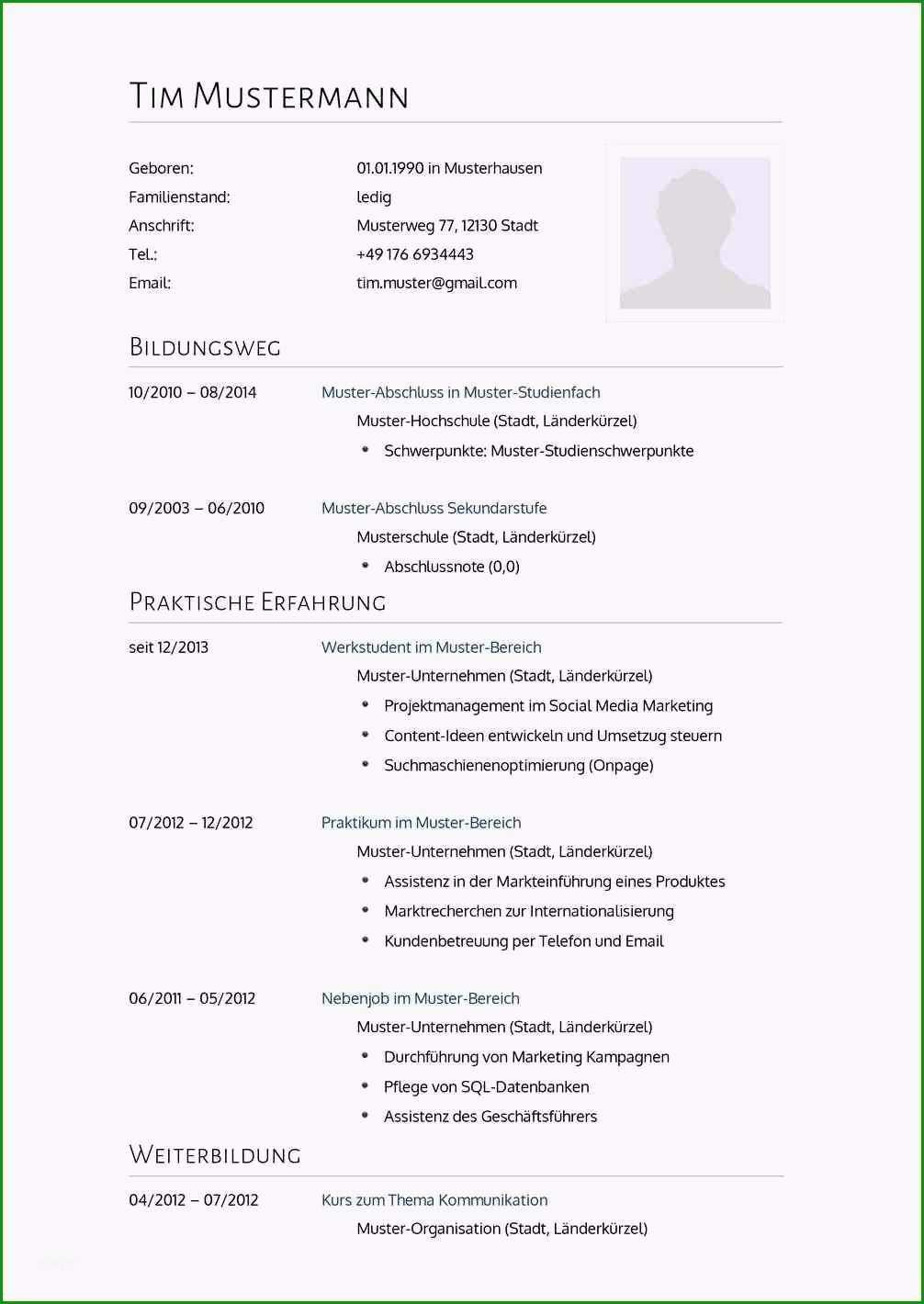 19 vorlage bewerbung 2014 rabindraart ams lebenslauf vorlagen