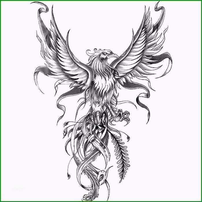 polnischer adler tattoo vorlage hubscher 44 besten polish tattoos bilder auf pinterest
