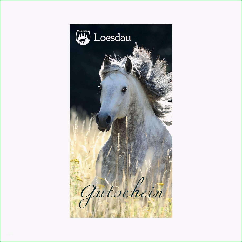 Loesdau Geschenk Gutschein websale7=loesdau&pi=375-010&ci=13 geschenke