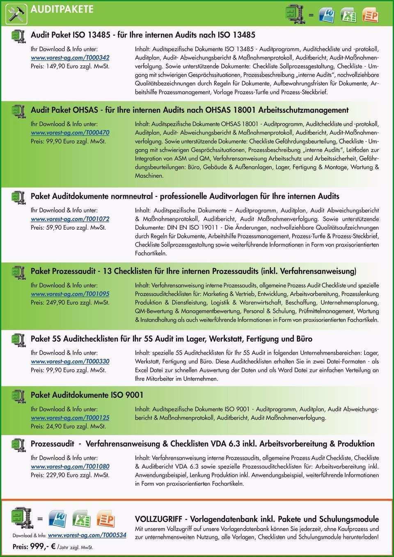 Vorschau pdf verfahrensanweisung projektmanagement prozessbeschreibung